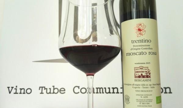 Moscato Rosa Maso Bergamini vinotube