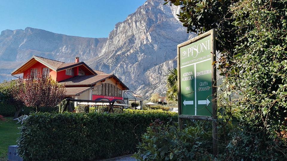 Eventi Enogastronomici in Trentino VinoTube & PISONI
