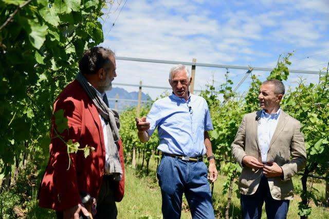Signori del Vino 2017 in Trentino Alto Adige News Vino Online