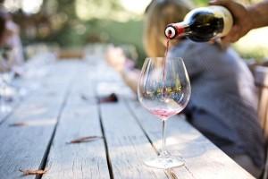 corso avvicinamento vino trentino vino online sommelier corsi vinotube