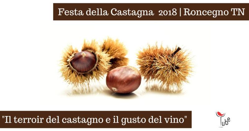 Abbinamento Cibo Vino alla Festa della Castagna Eventi Vino Trentino